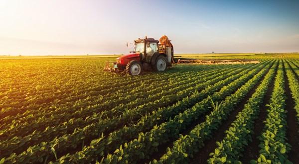 aplicacion-yeso-agricola