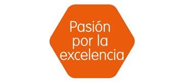 valores-etex-pasión-por-la-excelencia